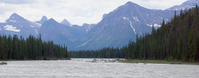 Athabasca River in Jasper Park
